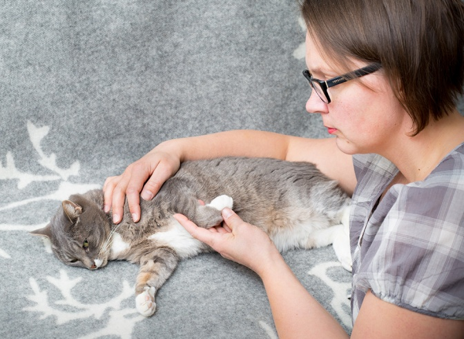 Heli Hyytiäinen kissaterapia